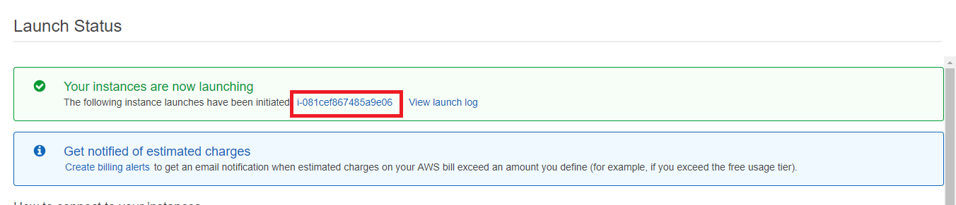 How-to-launch-EC2-instance-step-12.PNG